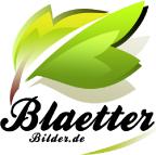 Blaetterbilder.de